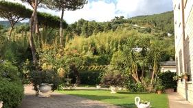 Grappolo d'oro: Il giardino