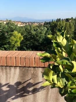 Hotel Garden: vista della terrazza